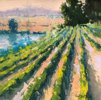 A Taste of Wine Country