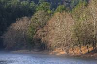Clarion River in Fog and Sunlight