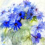 """Blue Daisys"" by james_falconer"