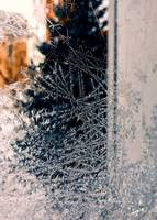 Ice Crystals on the Garage Window