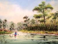 Canoeing The Wacissa River Florida