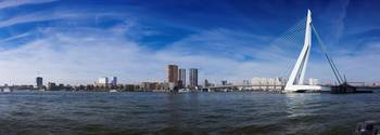 The Skyline of Rotterdam
