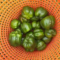 Green Pepper Bushel