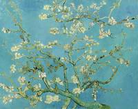 Almond Blossom by Vincent Van Gogh (1890)