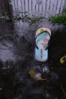 One Slipper in the Rain