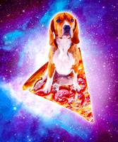 Outer Space Galaxy Dog Riding Pizza