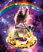 Space Cat Llama Pug Riding Nachos