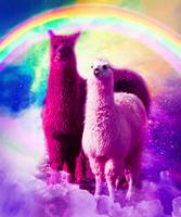 Crazy Funny Rainbow Llama In Space
