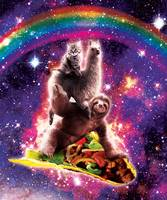 Space Cat Llama Sloth Riding Taco