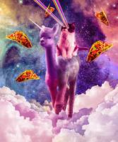 Cosmic Cat Riding Alpaca Unicorn