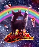 Space Sloth Riding Llama Unicorn - Taco & Burrito
