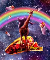 Space Sloth Riding Giraffe Unicorn - Taco & Burrit