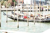 Gondolas In Dock