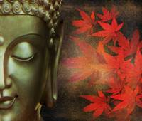 Golden Buddha With Red Maple Leaves