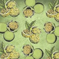 Walnuts Faded Lime Color