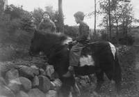 Vintage Photo  1920s - 1940s Boy riding a pony - 0