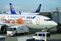 ANAs B-737800 JA85AN Flower Power