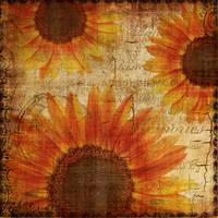 Rustic Sunflowers Yellow Orange Brown