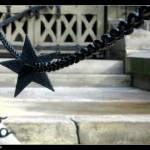 """Stars"" by SueToronto"
