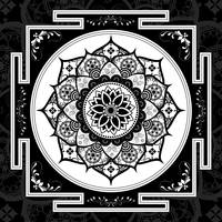 Black & White Patterned Flower