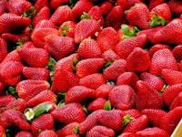 strawberries-red-fruit-royalty-free-70746