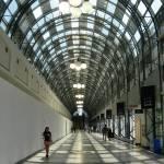 """Walkway"" by SueToronto"