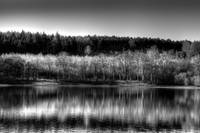 Reflections in Monochrome