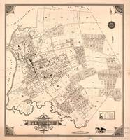 Vintage Map of Flushing NY (1894)