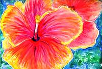 Pink Hibiscus colorful vibrant cheerful