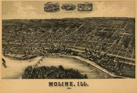 Vintage Pictorial Map of Moline IL (1889)