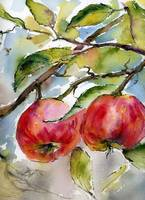Red Apples and Bees Watercolors 2