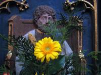 Saint of the Yellow Flower