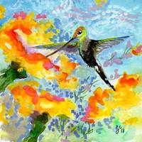 Hummingbird on Yellow Flowers