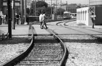 New Orleans Trolley Tracks 2004