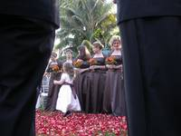 Child at Wedding