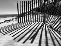 Cape Cod Snow Fence