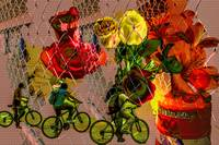Gates Bikes Flowers Barricades 3