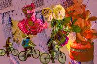 Gates Bikes Flowers Barricades 2