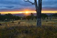 Sunset over Grassland - 1