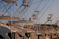Deep Sea Fishing Boats at Rest