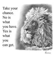 Take Your Chance, Lion