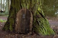 Door into fairy house