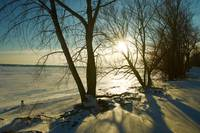 Winter Afternoon on Shores of Lake Erie