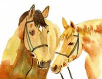 Horse Friends, watercolor painting