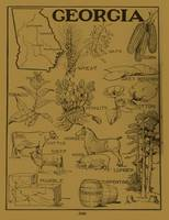 Vintage Agricultural Map of Georgia (1915) - Tan
