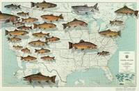 United States Trout Map (1999)