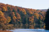 Clarion River reflecting Colors