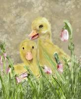 DUCKLING PALS