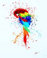 The Colorful Parrot
