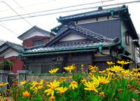 TraditionalHouse